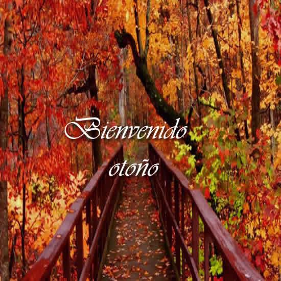otoñobienvenido13