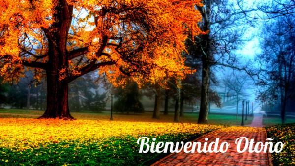 otoñobienvenido20