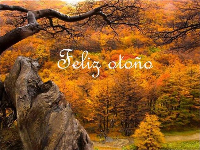 otoñofeliz2