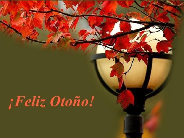 otoñofeliz20