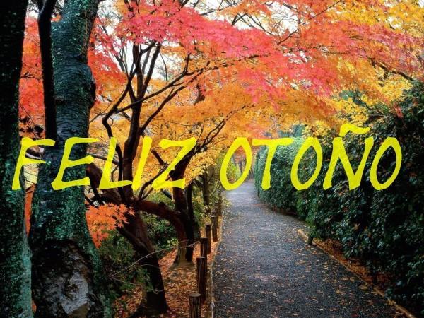 otoñofeliz7