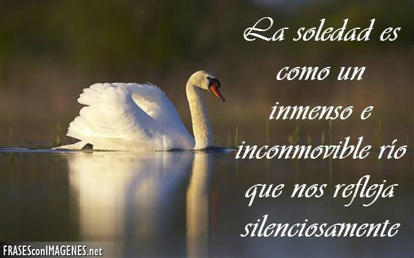 soledad.jpg3