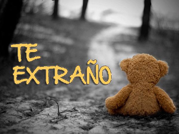 DecirTeExtrano13