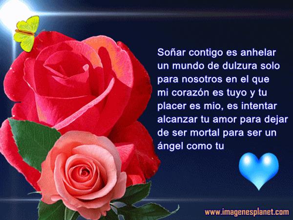 RosasParaDecirTeAmo12
