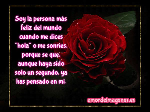 RosasParaDecirTeAmo13