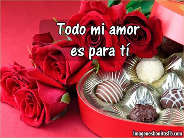 RosasParaDecirTeAmo15