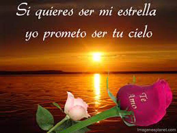 RosasParaDecirTeAmo18