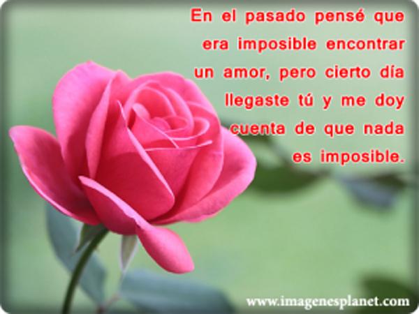 RosasQDicenTeAmo2