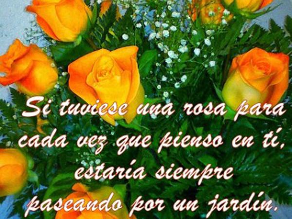 RosasQDicenTeAmo3