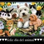 Imágenes con frases y citas destacadas para compartir este Día del Animal
