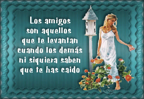 amigofrase.jpg13