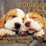 Imágenes hermosas con bonitas palabras para decir buenas noches