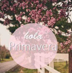 HolaPirmavera5