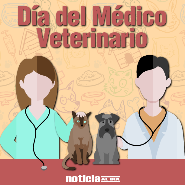 veterinario dia.jpg2
