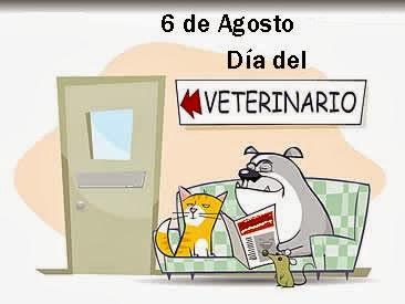 veterinario dia.jpg3