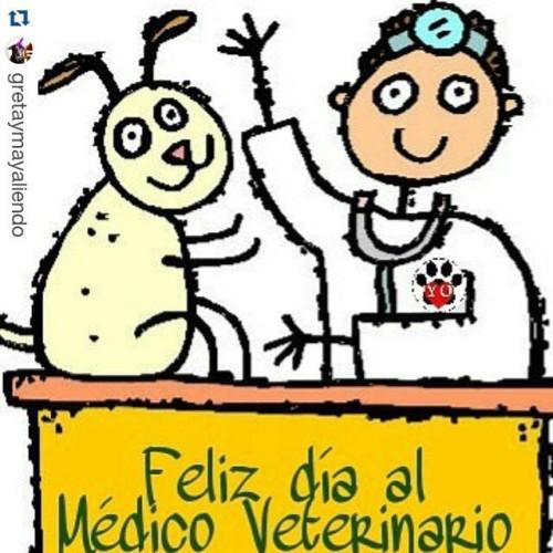veterinariofeliz.jpg11