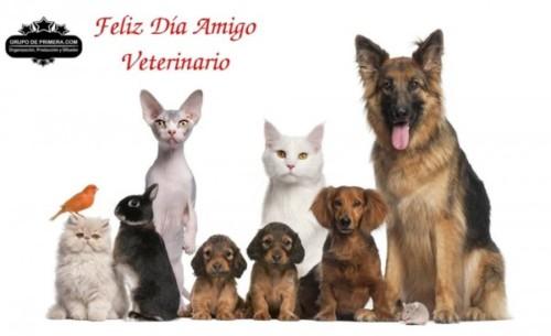 veterinariofeliz.jpg1