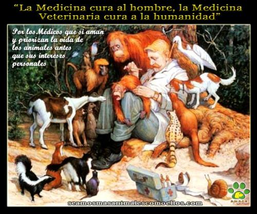 veterinariofelizfrase.jpg9