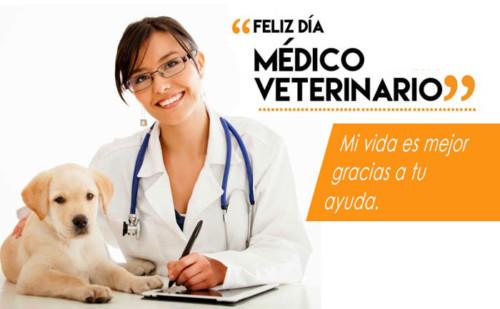 veterinariofelizfrase13