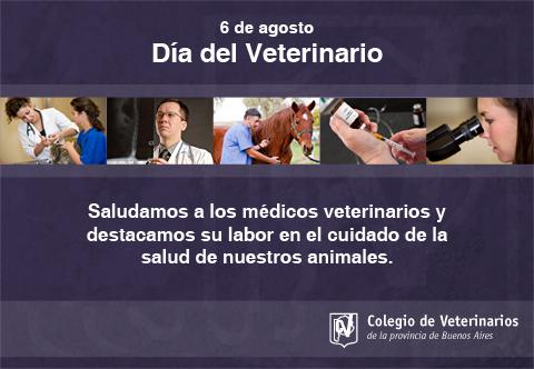 veterinariofrasejpg.jpg11