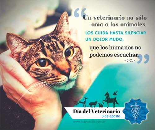 veterinariofrasejpg.jpg1
