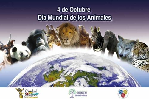 animalesmundial-jpg11