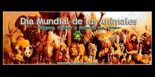 animalesmundialfrase-jpg21