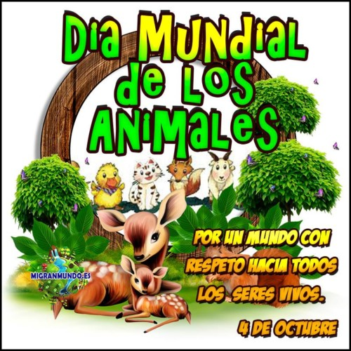 animalesmundialfrase-jpg5