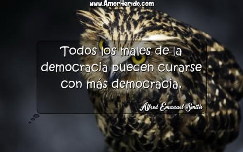 democraciacelebre.jpg7