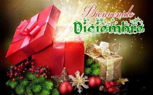 diciembrebienvenido-jpg31