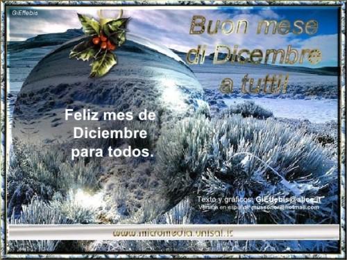 diciembrefeliz-jpg6