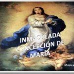 Imágenes, frases y oraciones para celebrar el Día de la Inmaculada Concepción