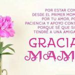 Imágenes con frases de agradecimiento para una madre, padre, hijo