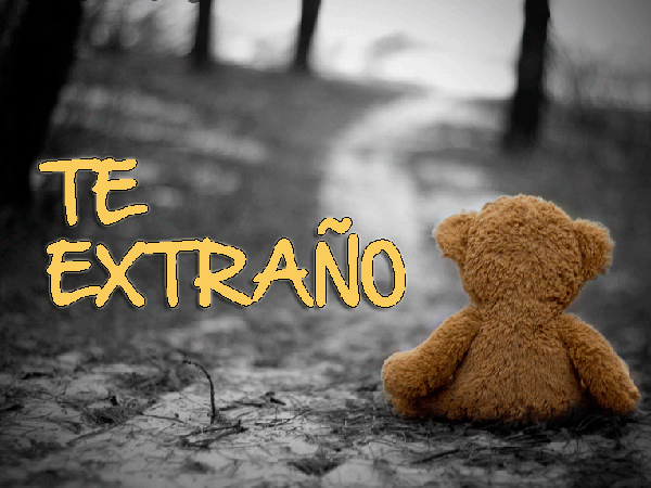 DecirTeExtrano13