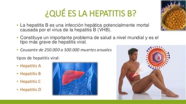 hepatitisB info