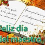 Imágenes con lindas dedicatorias para regalar este Día del Maestro