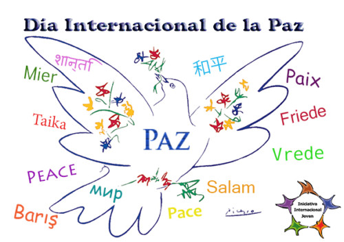 paz.jpg10