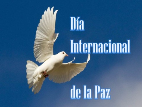 paz.jpg11