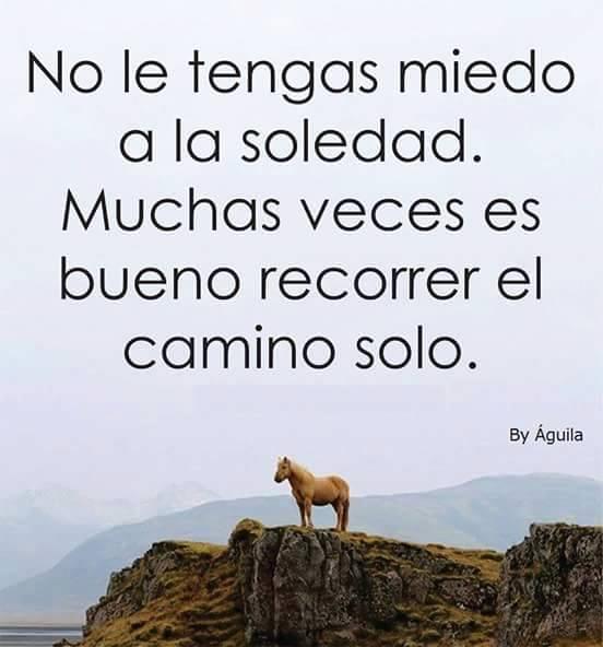 soledad24