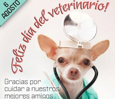 veterinariofelizfrase