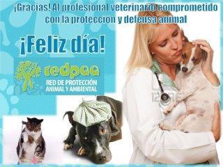 veterinariofrase8