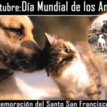 Imágenes para compartir del Día Mundial de los Animales