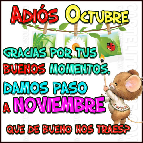 noviembreadiosfrase-jpg17