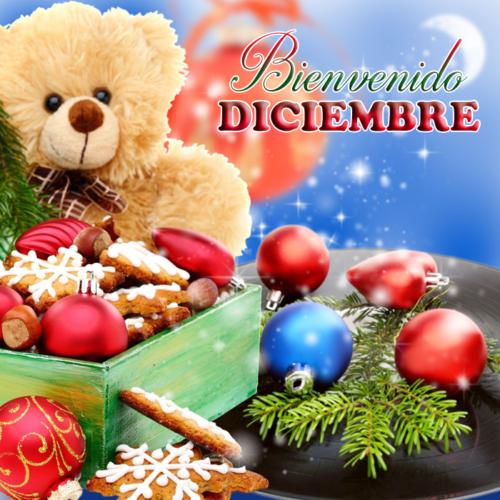 diciembrebienvenido-jpg25