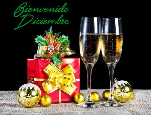diciembrebienvenido-jpg45