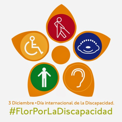 discapacidad-jpg10