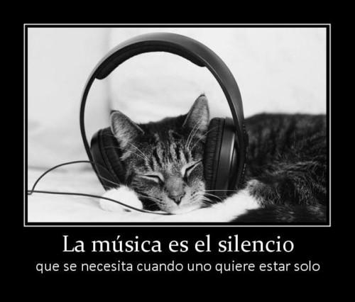 musicafrase-png6