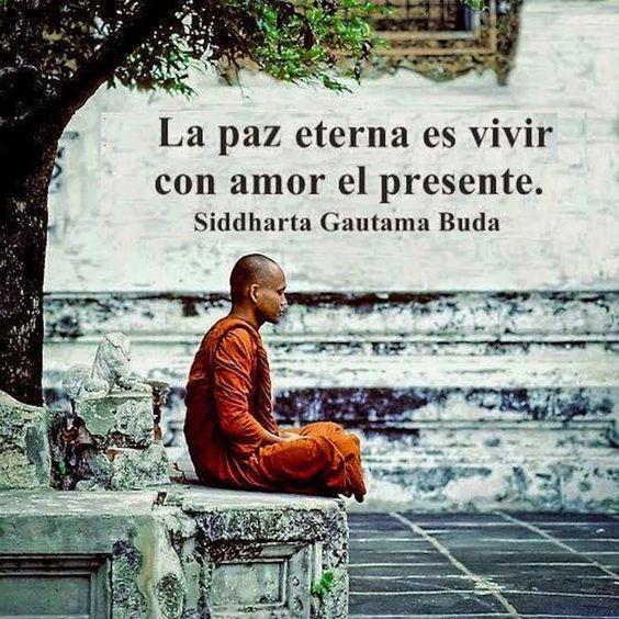 Imagenes Lindas Con Bellos Mensajes De Paz Amor Y Sobre La Vida
