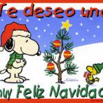 Tarjetas, postales y gifs animados con frases bonitas y mensajes cristianos para compartir esta Navidad