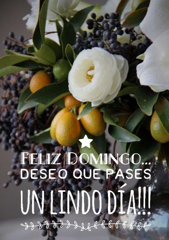 Bonitas Frases Y Mensajes Para Dar La Bienvenida Al Día Domingo En